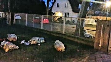 Müllsäcke vom Stalker über den Zaun geworfen