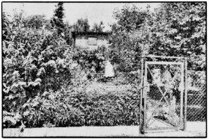 BILD-Zeitungsfoto vom 21.07.1987 - Lichtenrade: Haus des Kindesentführers